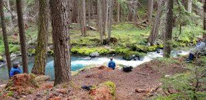 Creek at Fort Worden Park